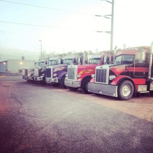 Chippewa Trails trucking & excavating